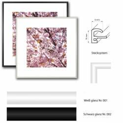 bilderrahmen 15x15 cm in schwarz oder wei g nstig kaufen kunststoff. Black Bedroom Furniture Sets. Home Design Ideas