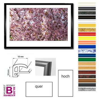 panorama bilderrahmen 40x120 120x40 cm aus kunststoff. Black Bedroom Furniture Sets. Home Design Ideas